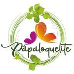 Papaloquelite-FlyMedia